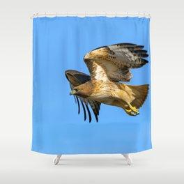 Inbound Shower Curtain