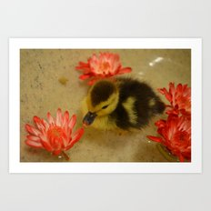 Ducky in the Flowers Art Print