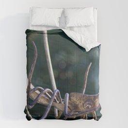 Gdansk IV Comforters