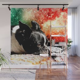 Boston Terrier (Jake) Wall Mural