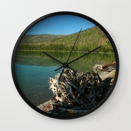 Driftwood On Lakeshore Wall Clock
