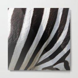 Zebra Skin Metal Print