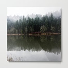 Lost In The PNW Metal Print
