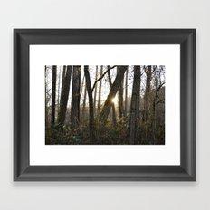 Peeking Through  Framed Art Print