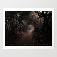 Misterious way Art Print
