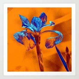 Glowing Iris... Art Print