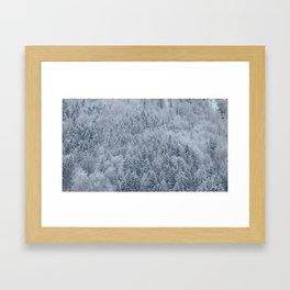 Snowy Pine Forest - Hallstatt, Austria Framed Art Print