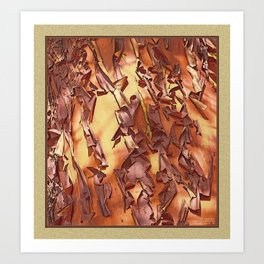 A STUDY OF MADRONA BARK Art Print