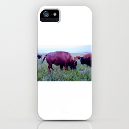 Pte Oyate, Buffalo Nation iPhone Case