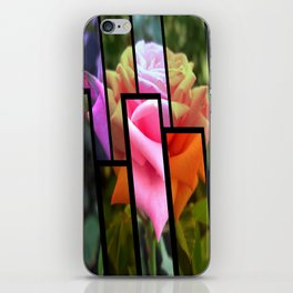 Pink Roses in Anzures 6 Tinted 1 iPhone Skin