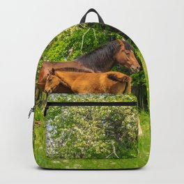 Foal Horse Baby Backpack