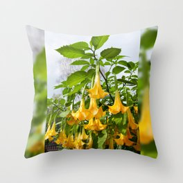 Big yellow Brugmansia called Angels Trumpets Throw Pillow