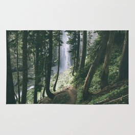 To The Falls Rug