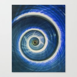 Blue and white spiral shell Canvas Print