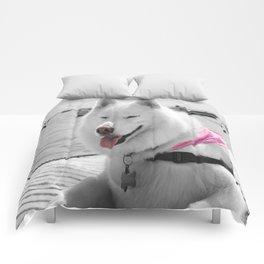 Girly Tehya Comforters