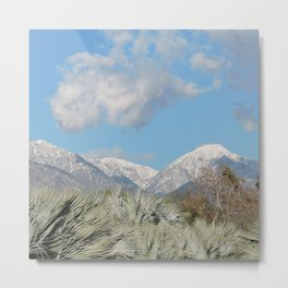 From Chaparral To Snow Metal Print