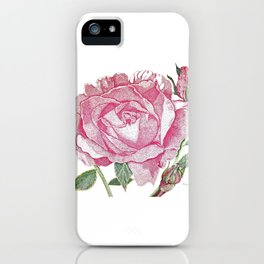 Queen Elizabeth Rose with Buds iPhone Case