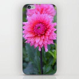 No Antidote iPhone Skin
