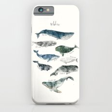 Whales Slim Case iPhone 6