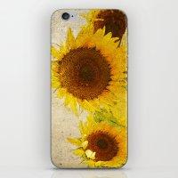 kansas iPhone & iPod Skins featuring Kansas by Chickadee