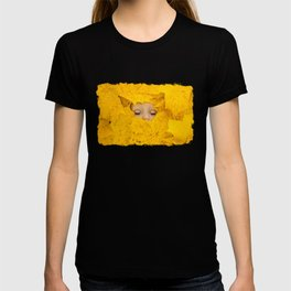 Moody, sleeping doll in vibrant yellow maple leaves T-shirt