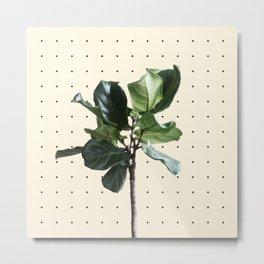 Home Ficus Metal Print