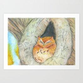 Cozy Owl Art Print