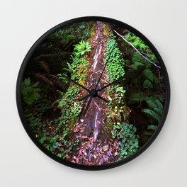 Redwood log bridge Wall Clock