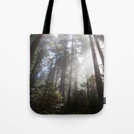 A Spectacle Too Much Tote Bag