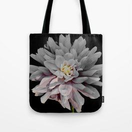 Grey Dahlia Bloom With Pink Tote Bag