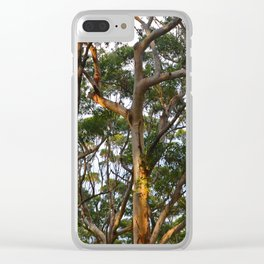 Gum Trees Clear iPhone Case