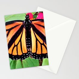 The Butterfly Dance Stationery Cards
