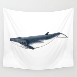 Bryde´s baby whale (Balaenoptera brydei) Wall Tapestry