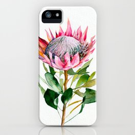 Protea iPhone Case