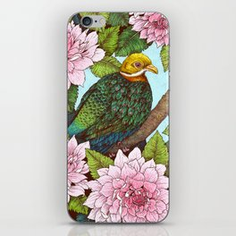 Whistling Fruit Dove in Spring iPhone Skin