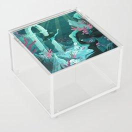 Mermaids of the Black Lagoon Acrylic Box