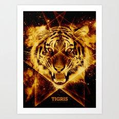 Tigris Beautiful Symmetry Art Print
