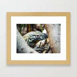 Baby Komodo Dragon Framed Art Print