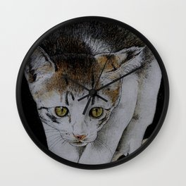 Focused cat Wall Clock