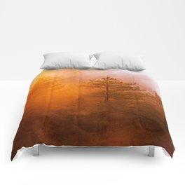 Sunrise Hug Comforters