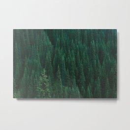 deep woods. Metal Print