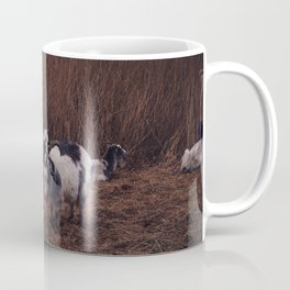 Goats in the wild, Groningen, Netherlands Coffee Mug