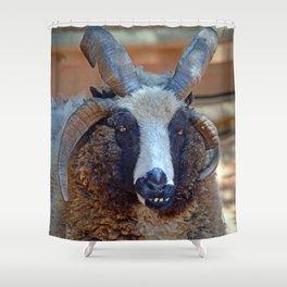 Jacob seep Shower Curtain
