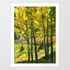 Backlit Aspens Art Print