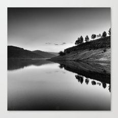 Forest Reflection Bw Canvas Print