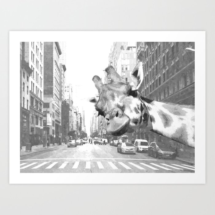 Black and White Selfie Giraffe in NYC Art Print