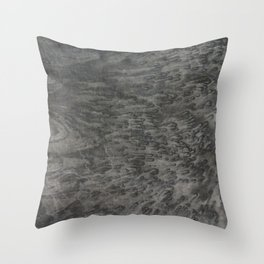 Salted Black Throw Pillow