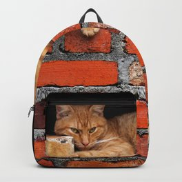 Orange Cat on Red Brick Wall Backpack