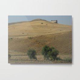 apulia landscape Metal Print