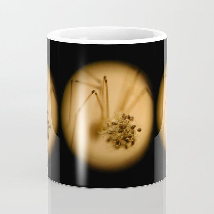Skull Spider with Spiderlings Coffee Mug